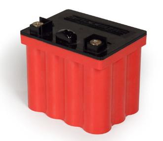EV02 - 12 Cell Battery